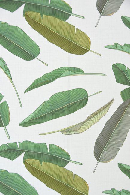 banana-leaf-wallpaper-11