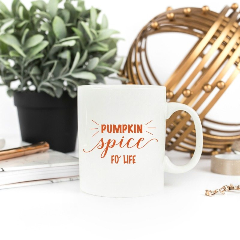 12 Cozy and Budget-Friendly Fall Decorations For Your Home