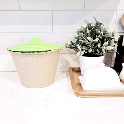 8 Ways to Green Your Home (& Save Money!)