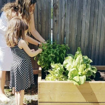 How to Build a Raised Garden Bed {Tutorial}