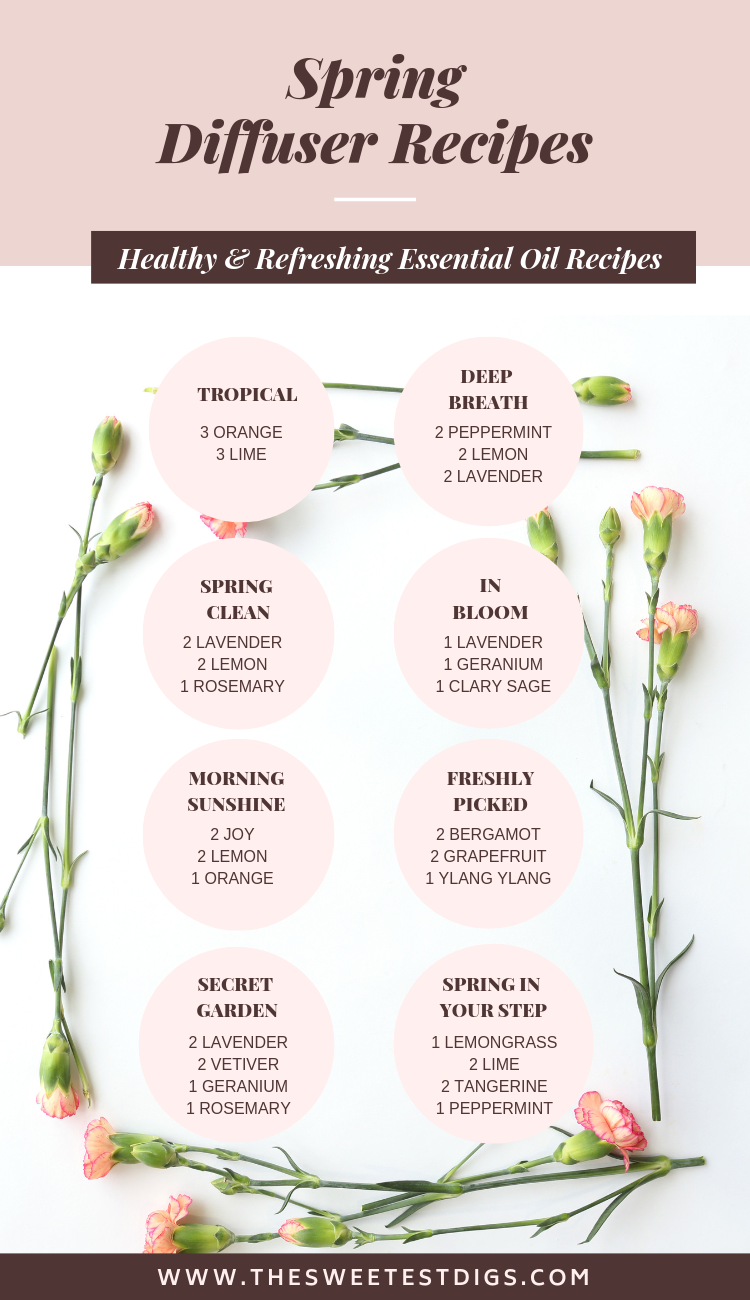 8 Best Diffuser Recipes For Spring The Sweetest Digs